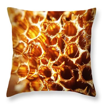 Winter Bee Balm Macro Throw Pillow