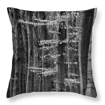 Winter Beech Throw Pillow