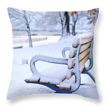 Winter Bench Throw Pillow by Elena Elisseeva