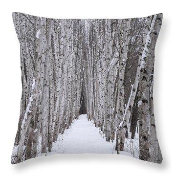 Winter Birch Path Throw Pillow