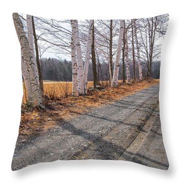 Throw Pillow featuring the photograph Winter Birches by Tom Singleton