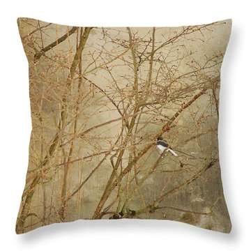 Winter Bird At The Audubon Throw Pillow