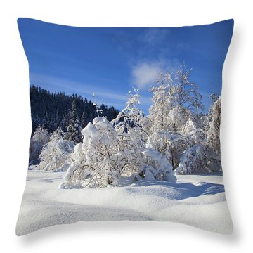 Winter Blanket Throw Pillow by Mike  Dawson