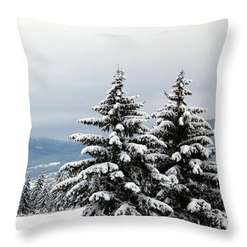 Throw Pillow featuring the photograph Winter Bliss by Will Borden