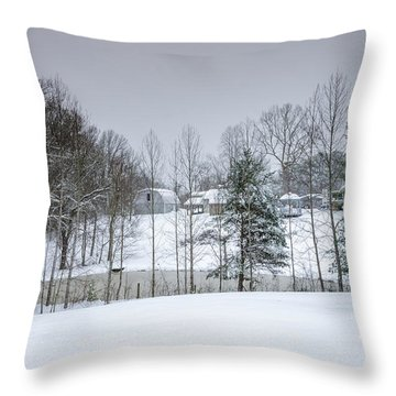 Blizzard Beauty Throw Pillow