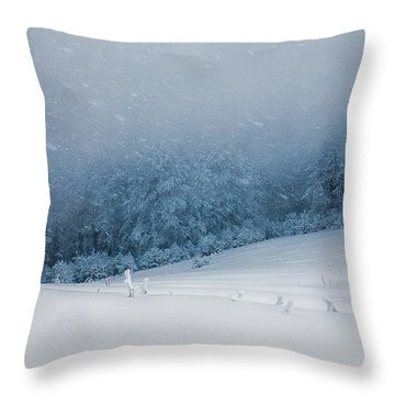 Winter Blizzard Throw Pillow by Evgeni Dinev