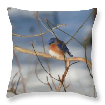 Winter Bluebird Art Throw Pillow