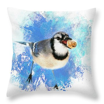 Throw Pillow featuring the photograph Winter Bluejay by Darren Fisher