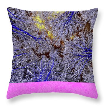 Throw Pillow featuring the photograph Winter Blues by Tony Beck