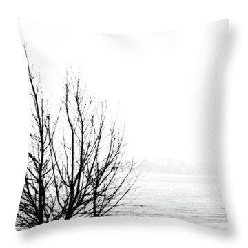 Winter Bones Throw Pillow