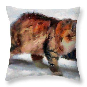 Winter Cat Throw Pillow by Sergey Lukashin