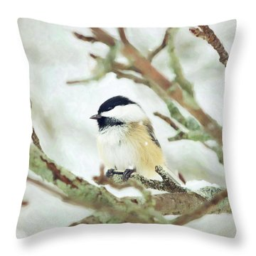 Winter Chickadee Throw Pillow