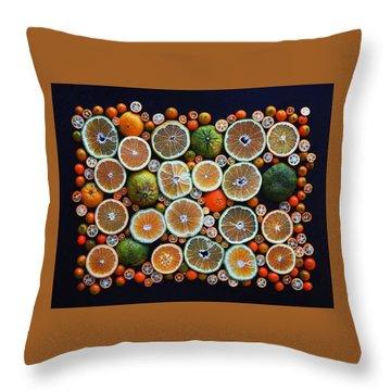 Winter Citrus Mosaic Throw Pillow