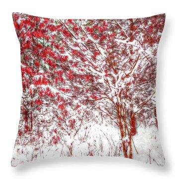 Winter Color  Throw Pillow