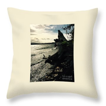 Winter Comes To The Sea Throw Pillow