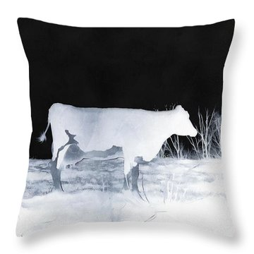 Throw Pillow featuring the photograph Winter Cow - Cow by Janine Riley