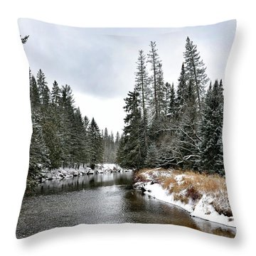 Throw Pillow featuring the photograph Winter Creek In Adirondack Park - Upstate New York by Brendan Reals
