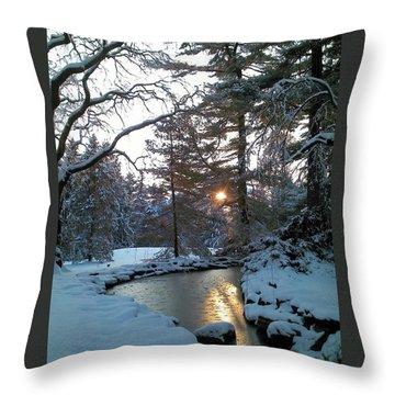Winter Creek Throw Pillow