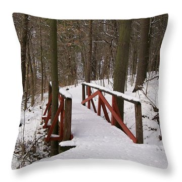 Throw Pillow featuring the photograph Winter Crossing by Sara  Raber