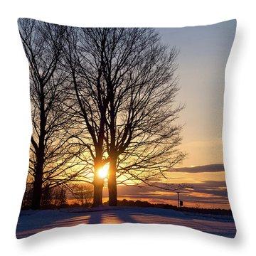 Winter, Crystal Spring Farm, Brunswick, Maine -78592 Throw Pillow