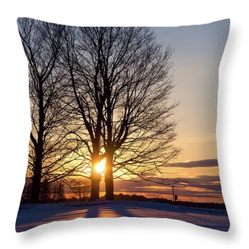 Throw Pillow featuring the photograph Winter, Crystal Spring Farm, Brunswick, Maine -78592 by John Bald