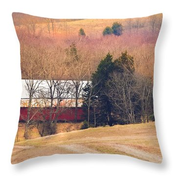 Throw Pillow featuring the photograph Winter Day At The Farm by Debbie Karnes