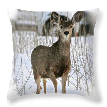 Winter Deer On The Tree Farm Throw Pillow