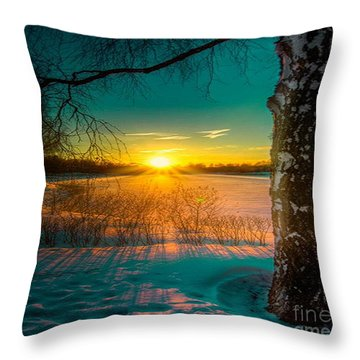 Winter Delight In British Columbia Throw Pillow
