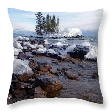 Winter Delight Throw Pillow by Sandra Updyke