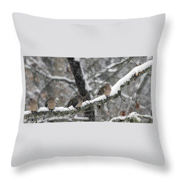 Winter Doves Throw Pillow by Diane Giurco