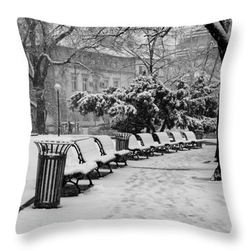 Winter Down The Path Throw Pillow by Rae Tucker