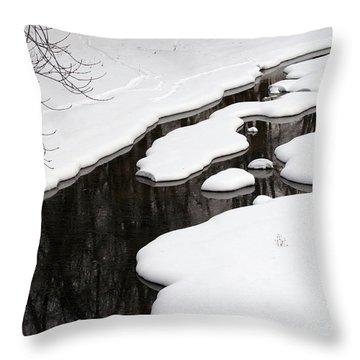 Throw Pillow featuring the photograph Winter Dreams by Paula Guttilla