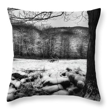 Throw Pillow featuring the photograph Winter Dreary by Bill Wakeley
