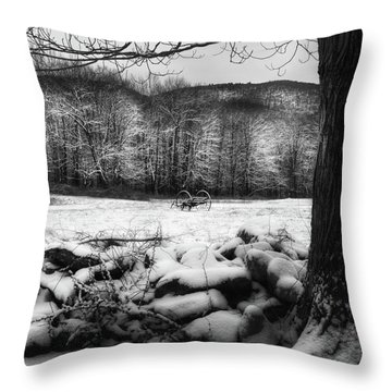 Throw Pillow featuring the photograph Winter Dreary Square by Bill Wakeley
