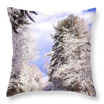 Winter Drive Throw Pillow