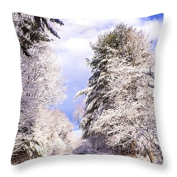 Winter Drive Throw Pillow