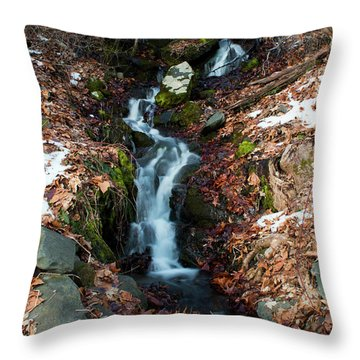 Winter Falls At Franny Reese Throw Pillow by Jeff Severson