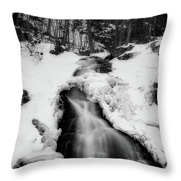 Throw Pillow featuring the photograph Winter Falls With Sun by Alan Raasch