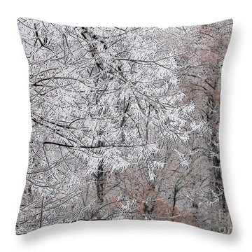 Winter Fantasy Throw Pillow by Craig Walters