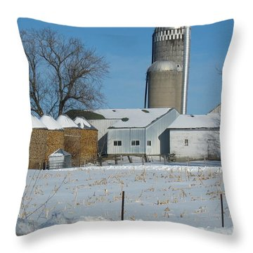Winter Feed Throw Pillow