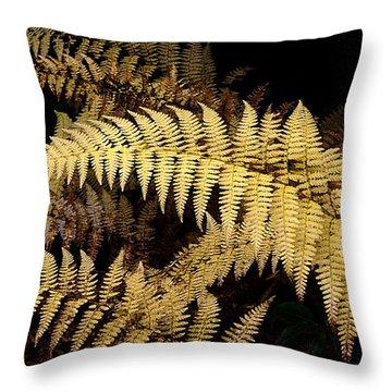 Throw Pillow featuring the photograph Winter Fern by Ken Barrett