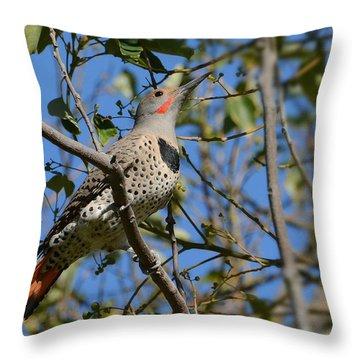 Winter Flicker Throw Pillow