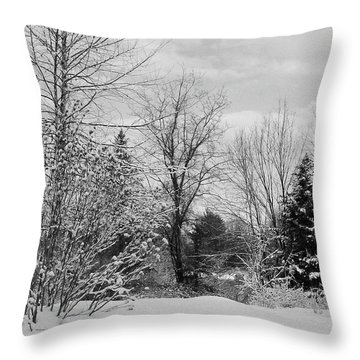 Winter Fluff Throw Pillow