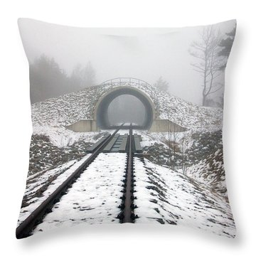 Winter Fog Throw Pillow