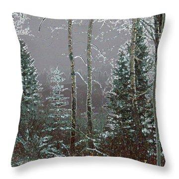Throw Pillow featuring the digital art Winter Fog by Stuart Turnbull