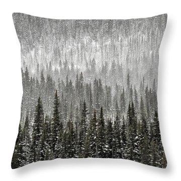 Winter Forest Throw Pillow by Brad Allen Fine Art