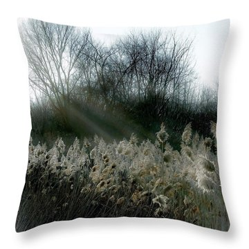 Throw Pillow featuring the photograph Winter Fringe by Kendall McKernon