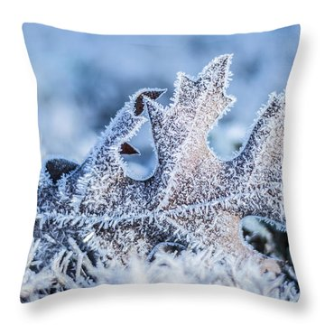 Winter Frost Throw Pillow