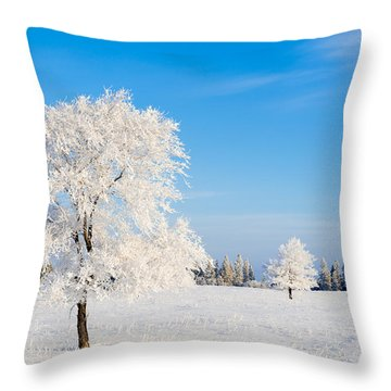 Winter Frostland Throw Pillow