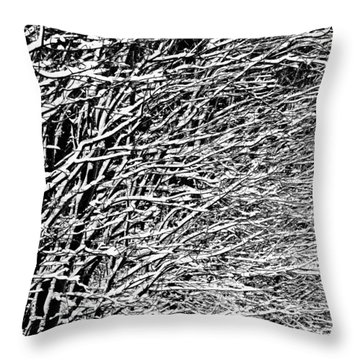 Winter Throw Pillow